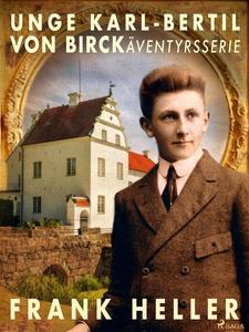 Unge Karl-Bertil von Birck: äventyrsserie (e-bo