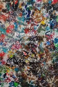 Bortom förnekelsens dimmor (e-bok) av Eva Dilln