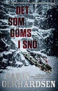Det som göms i snö (e-bok) av