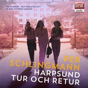 Harpsund tur och retur (ljudbok) av Per Schling