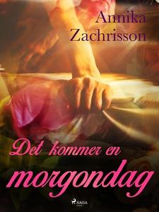 Det kommer en morgondag (e-bok) av Annika Zachr