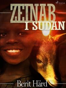 Zeinab i Sudan (e-bok) av Berit Härd