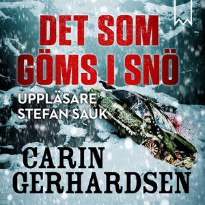 Det som göms i snö (ljudbok) av Carin Gerhardse
