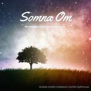 Somna om (ljudbok) av Camilla Gyllensvan