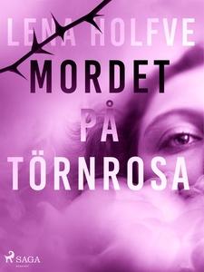 Mordet på Törnrosa (e-bok) av Lena Holfve
