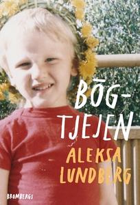 Bögtjejen (e-bok) av Aleksa Lundberg