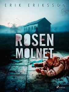 Rosenmolnet (e-bok) av Erik Eriksson