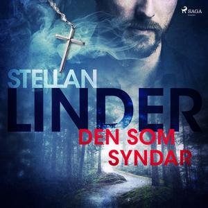 Den som syndar (ljudbok) av Stellan Linder