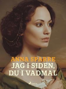 Jag i siden, du i vadmal (e-bok) av Anna Sparre