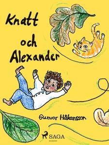 Knatt och Alexander (e-bok) av Gunvor Håkansson