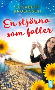 En stjärna som faller (e-bok) av Jakob Nilsson,