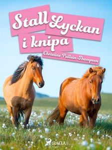 Stall Lyckan i knipa (e-bok) av Christine Pulle