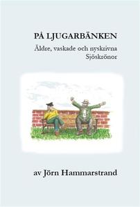 På ljugarbänken (e-bok) av Jörn Hammarstrand