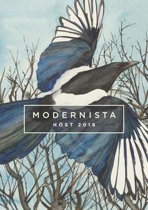 Modernista Höstkatalog 2018 (e-bok) av Modernis