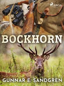 Bockhorn (e-bok) av Gunnar E. Sandgren