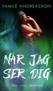När jag ser dig (e-bok) av Yamilé Andreasson