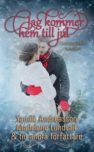 Jag kommer hem till jul (e-bok) av Yamilé Andre