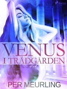 Venus i trädgården (e-bok) av Per Meurling