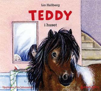 Teddy i huset (ljudbok) av Lin Hallberg