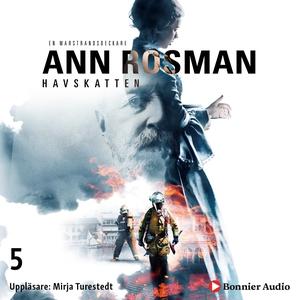 Havskatten (ljudbok) av Ann Rosman
