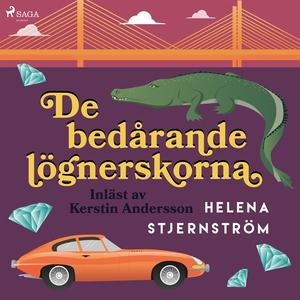 De bedårande lögnerskorna (ljudbok) av Helena S