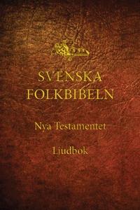 Nya testamentet (Svenska Folkbibeln 15), Ljudbo
