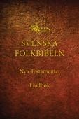 Nya testamentet (Svenska Folkbibeln 15), Ljudbok med bakgrundsmusik