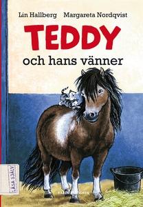 Teddy och hans vänner (ljudbok) av Lin Hallberg