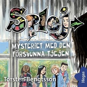Mysteriet med den försvunna tjejen (ljudbok) av