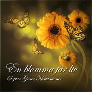 En blomma får liv. En guidad meditation (ljudbo