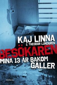 Besökaren : mina 13 år bakom galler (e-bok) av