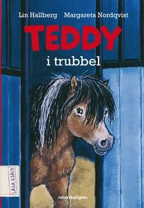 Teddy i trubbel (ljudbok) av Lin Hallberg