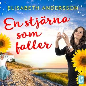 En stjärna som faller (ljudbok) av Elisabeth An