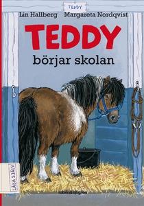 Teddy börjar skolan (ljudbok) av Lin Hallberg