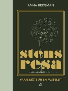 Stens resa (e-bok) av Anna Bergman