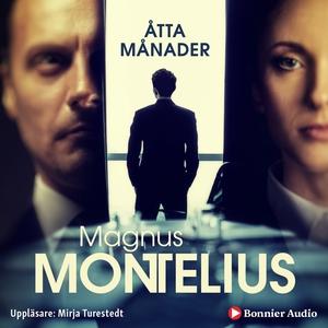 Åtta månader (ljudbok) av Magnus Montelius