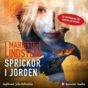 Sprickor i jorden (ljudbok) av Mariette Lindste
