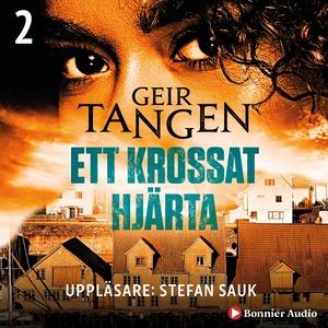 Ett krossat hjärta (ljudbok) av Geir Tangen
