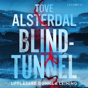 Blindtunnel (ljudbok) av Tove Alsterdal