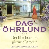 Det lilla hotellet på rue d'Amour