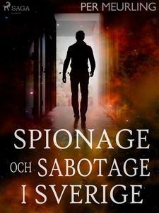 Spionage och sabotage i Sverige (e-bok) av Per