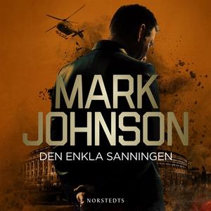 Den enkla sanningen (ljudbok) av Mark Johnson