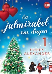 Ett julmirakel om dagen - del 1 (e-bok) av Popp