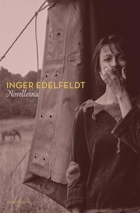Novellerna (e-bok) av Inger Edelfeldt
