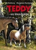 Teddy - en liten hjälte