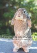 Sanningen om kaniner: Ett missförstått sällskapsdjur