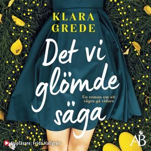 Det vi glömde säga (ljudbok) av Klara Grede