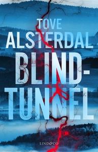 Blindtunnel (e-bok) av Tove Alsterdal