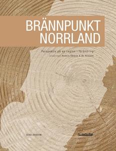 Brännpunkt Norrland : Perspektiv på en region i