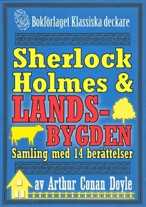 Sherlock Holmes-samling: Mästerdetektiven ger s